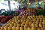 Our favourite mangoes at a big fruit market in Langkawi (Malaysia) (Wedekind Maria)