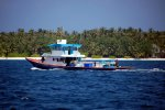 01_Typical_Maldivian_skipjack_tuna_fishing_vessel
