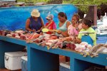 16_Fishmarket_in_Puerto_Ayora